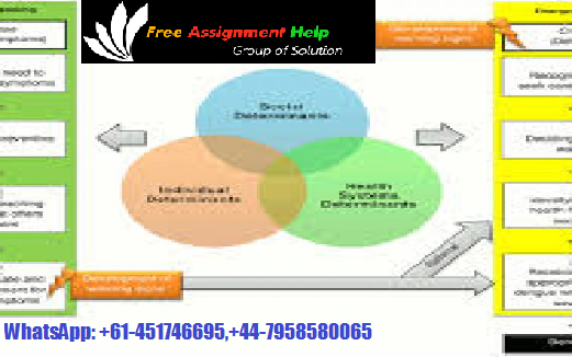 Create Contract Assignment Help