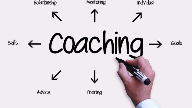Critical Review Coaching Session
