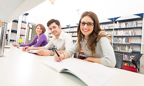 Tourism Policy Assignment Help