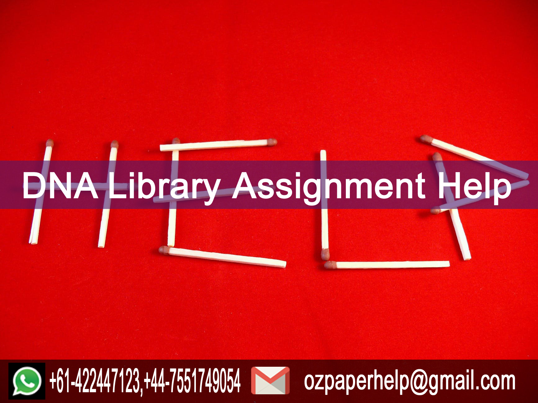 DNA Library Assignment Help