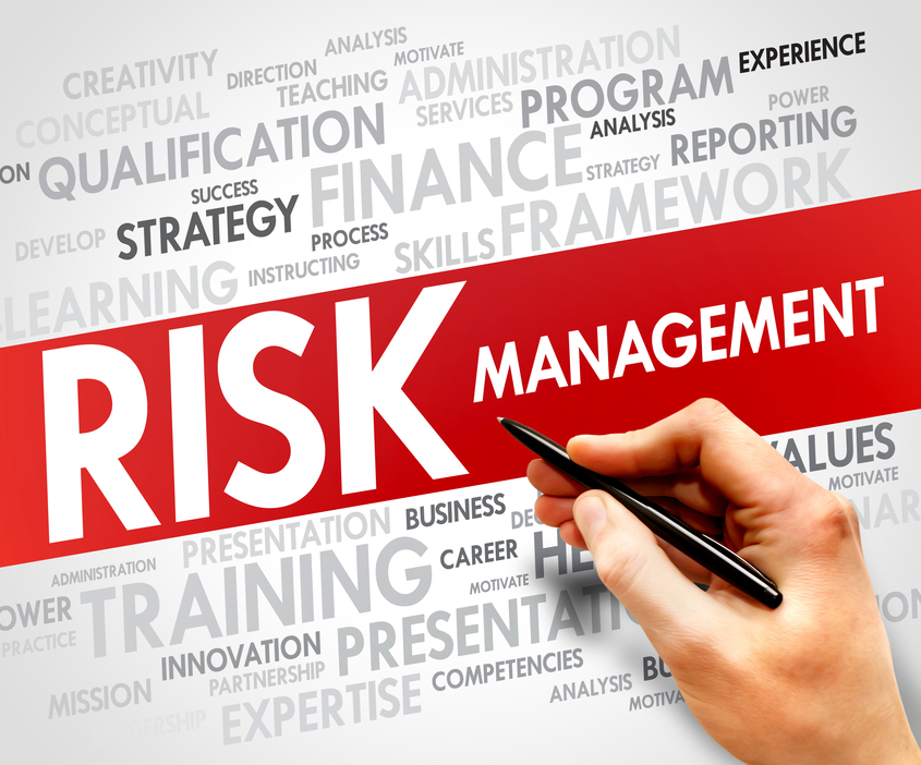Risk Management Committees