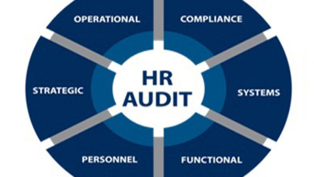 Auditing Policies of an Organization